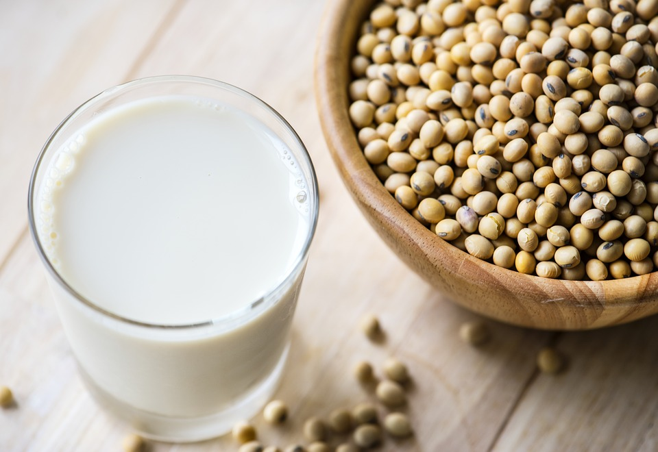 image of soy protein powder